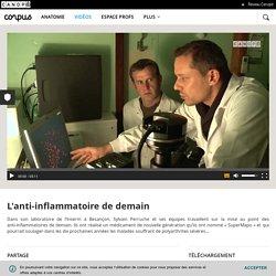 L'anti-inflammatoire de demain - Corpus - réseau Canopé