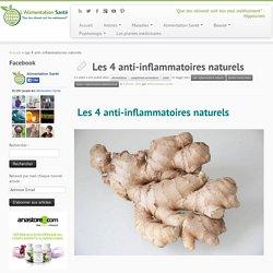 Les 4 anti-inflammatoires naturels