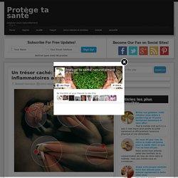 Un trésor caché: Des fruits anti inflammatoires articulaires efficaces ~ Protège ta santé