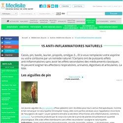 15 anti-inflammatoires naturels - Medisite : Les aiguilles de pin