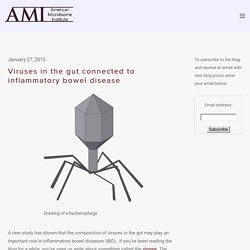 Viruses in the gut connected to inflammatory bowel disease — The American Microbiome Institute