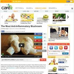The Most Anti-Inflammatory Mushroom