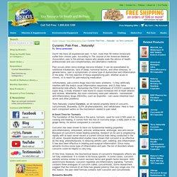 Anti-Inflammatory Pain - Curamin: Pain Free ... Naturally! - by Terry Lemerond
