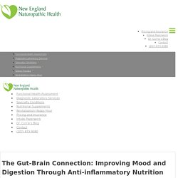 The Gut-Brain Connection: Improving Mood and Digestion Through Anti-inflammatory Nutrition - New England Naturopathic Health