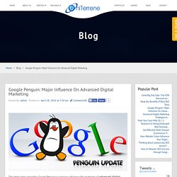 Google Penguin: Major Influence On Advanced Digital Marketing