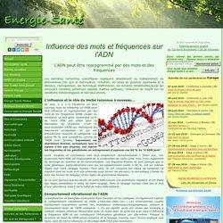 Influence des mots et fréquences sur l'ADN