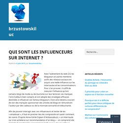 Qui sont les influenceurs sur internet ?