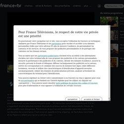 On n'est plus des pigeons ! - Influenceurs téléréalité : faut-il se laisser influencer ? en streaming - Replay France tv slash