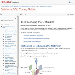 Influencing the Optimizer
