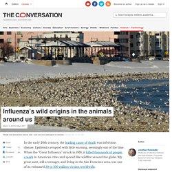 THE CONVERSATION 09/03/18 Influenza's wild origins in the animals around us