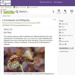 Kids InfoBits - Document - Centipede and Millipede