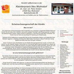 Infoblatt Scheinschwangerschaft Kleintierpraxis Dr. med.vet. Petra Sindern, Neu Wulmstorf