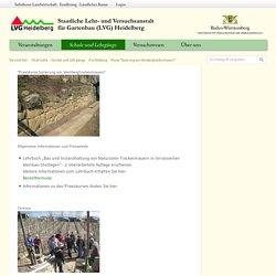 """Infodienst - LVG Heidelberg - Kurse """"Sanierung von Weinbergtrockenmauern"""""""