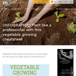 [INFOGRAPHIC] Plant like a professional with this vegetable growing cheatsheet