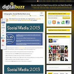 Social Media Stats 2013
