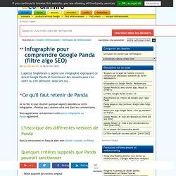 Infographie pour comprendre Google Panda (filtre algorithme référencement)