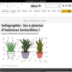 Infographies : les 9 plantes d'intérieur invincibles !