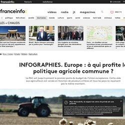 INFOGRAPHIES. Europe: à qui profite la politique agricole commune?