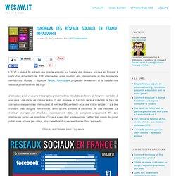 Panorama des réseaux sociaux en France, Infographie