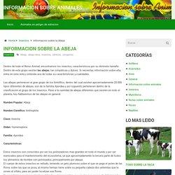 Informacion sobre animales