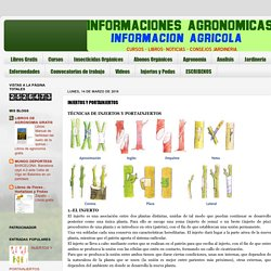 INFORMACIONES AGRONOMICAS: INJERTOS Y PORTAINJERTOS