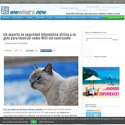 Un experto en seguridad informática utiliza a su gato para localizar redes WiFi sin contraseña