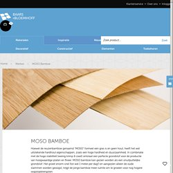 Informatie over Moso Bamboe