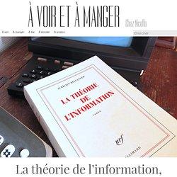 La théorie de l'information, Aurélien Bellanger