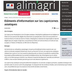 MAAF 01/09/14 Eléments d'information sur les capricornes asiatiques