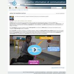 techniques usuelles information et communication - cahier de réussites e-primo