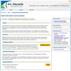 Master Information et Communication