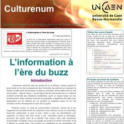 L'information à l'ère du buzz