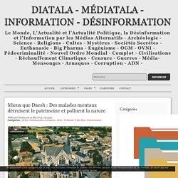 Mieux que Daesh : Des malades mentaux détruisent le patrimoine et polluent la nature - Diatala