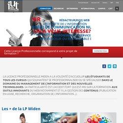 Médiation de l'information et du document dans les environnements numériques - Site officiel de l'IUT Robert SCHUMAN