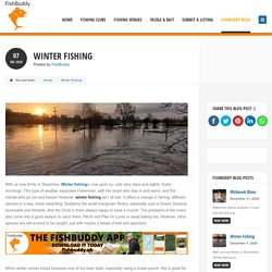 Get The Winter Fishing Clubs & Venues Information