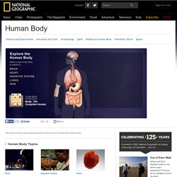 Human Body, Human Body Information, Facts, News, Photos
