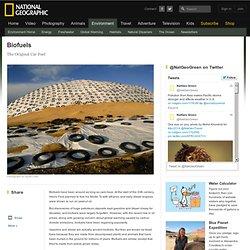 biofuel-profile
