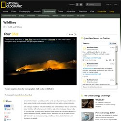 Wildfires Article, Forest Fires Information, Wildland Fires Facts