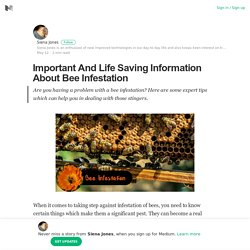 Important And Life Saving Information About Bee Infestation