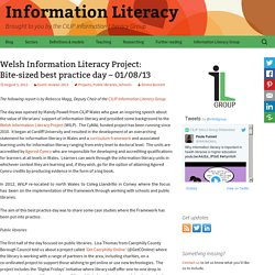 Welsh Information Literacy Project: Bite-sized best practice day – 01/08/13