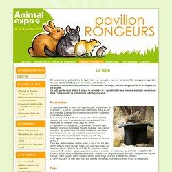 Fiche d'information sur le lapin