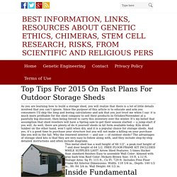 Best information, links, resources about genetic ethics, chimeras, stem cell research, risks, from scientific and religious pers