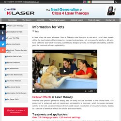 K-Laser Class4 Laser Therapy - Information for Vets - Setting the Standard in Class IV Laser Therapy in the UK and worldwide.
