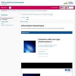 Information Numérique - Sciences Numériques et Technologie - Cité scolaire Lannemezan
