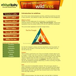 Information on wildfires for young people