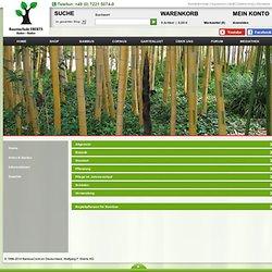 Informationen zum Bambus