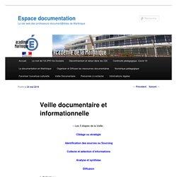 Veille documentaire et informationnelle – Documentation