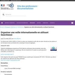 Organiser une veille informationnelle en utilisant Searcheeze