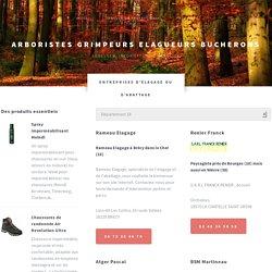 Toutes les informations pour les arboristes grimpeurs, élagueurs et bûcherons