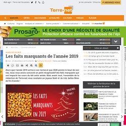 Les informations marquantes sur le marché du blé en 2019